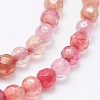 Natural Agate Beads Strands X-G-E469-12F-3
