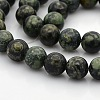 Natural Kambaba Jasper Beads Strands G-N0120-09-10mm-1
