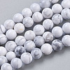 Natural Howlite Beads Strands TURQ-G091-6mm-1