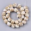Natural Trochid Shell/Trochus Shell Beads StrandsX-SSHEL-N032-01-2