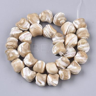Natural Trochid Shell/Trochus Shell Beads StrandsX-SSHEL-N032-01-1