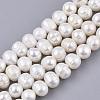 Natural Cultured Freshwater Pearl Beads StrandsPEAR-Q015-032B-01-1