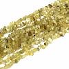 Natural Yellow Opal Beads StrandsG-P332-36A-1